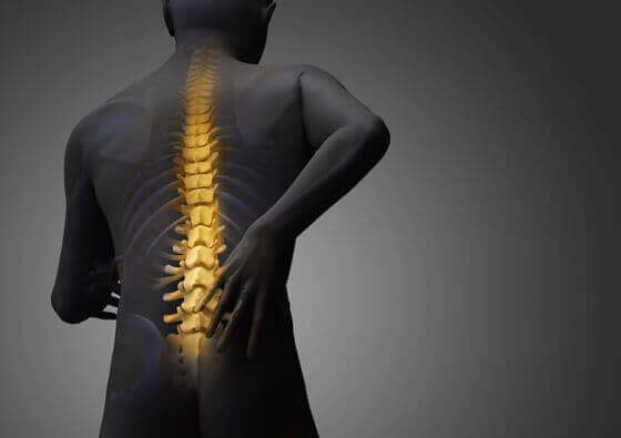 Difference between osteopath, physiotherapist and chiropractor